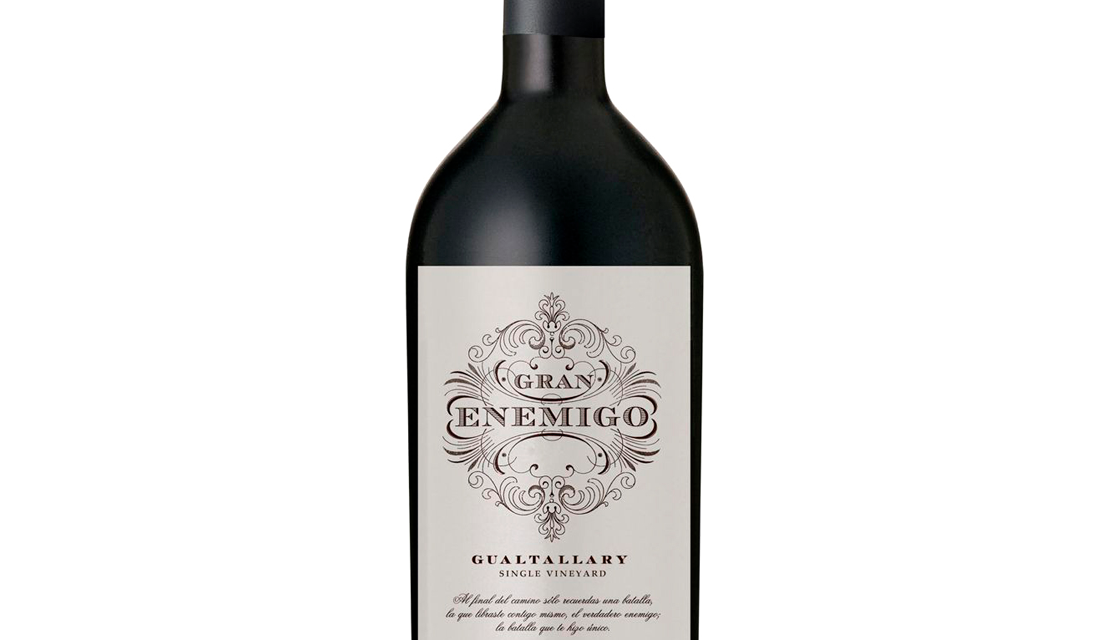 Gran Enemigo Gualtallaray Single Vineyard Mendoza Argentina - Bodega Aleanna