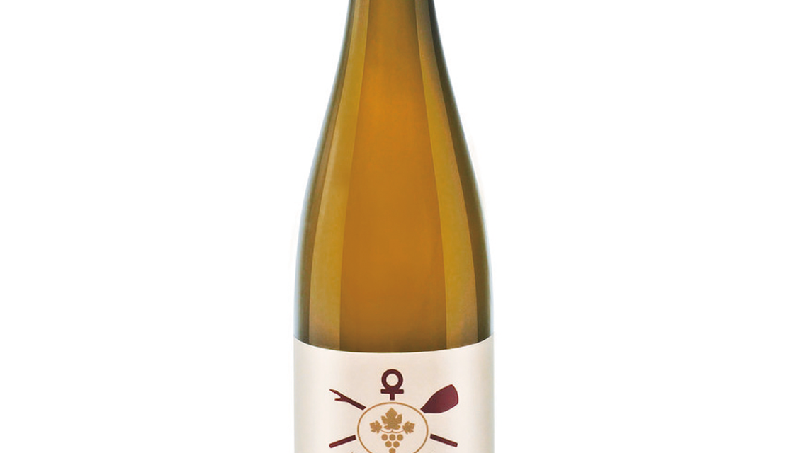 Hollenburger, Riesling 2018 - Christoph Hoch